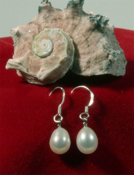 925 Sterling Silber Süßwasser Zucht-Perlen-Ohrringe Hänger - Weiß - ca. 7 mm