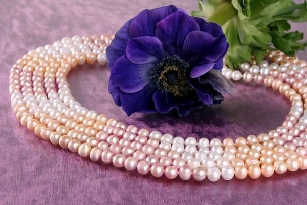 Echtes 5-Reihiges Perlen Collier aus Süsswasser Perlen Stella 3-Farbig C03 NEU